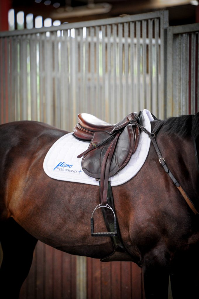 THE WINDRUSH EQUESTRIAN FOUNDATION ANNOUNCES COLLABORATION WITH HIGH PERFORMANCE EQUESTRIAN COMPANY MICROPERFORMANCE+